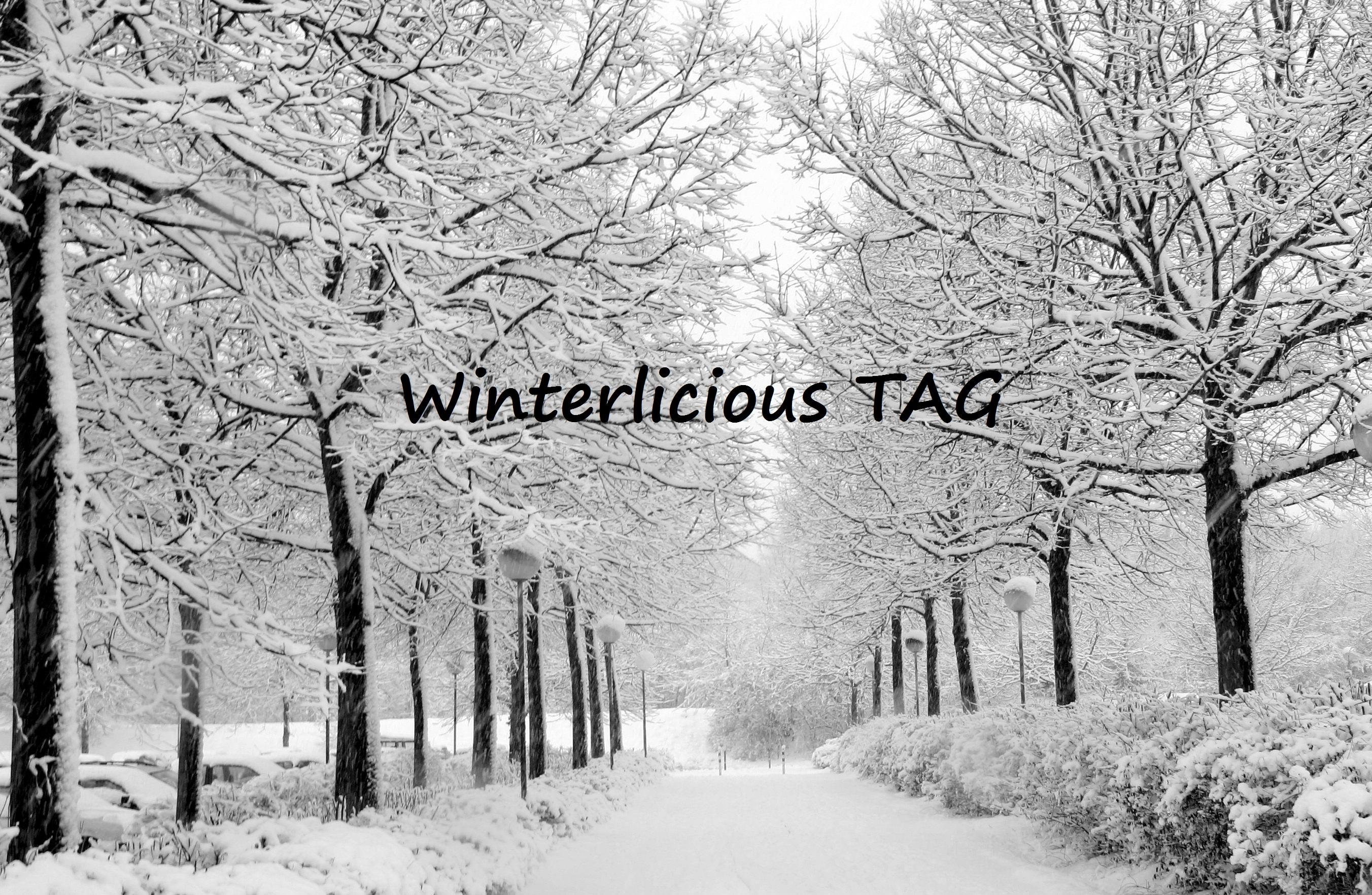 winterlicious-tag-2